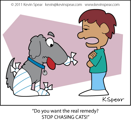 Spear 3798 Canine Remedy